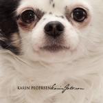 chihuahua_karin_foto_com9