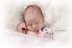 babyfotograf_KarinPedersen_KarinFoto_nyfodtfoto_sarpsborg_østfold_oslo-1