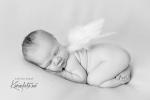engel_baby_karinfoto_babyfotograf