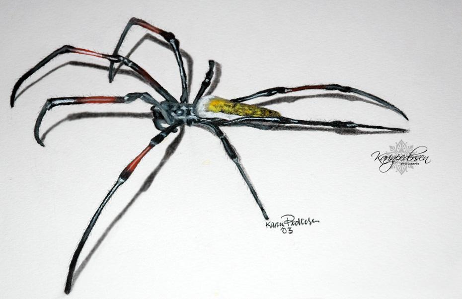 PASTELLKRITT | Pastellkritt tegning av en edderkopp