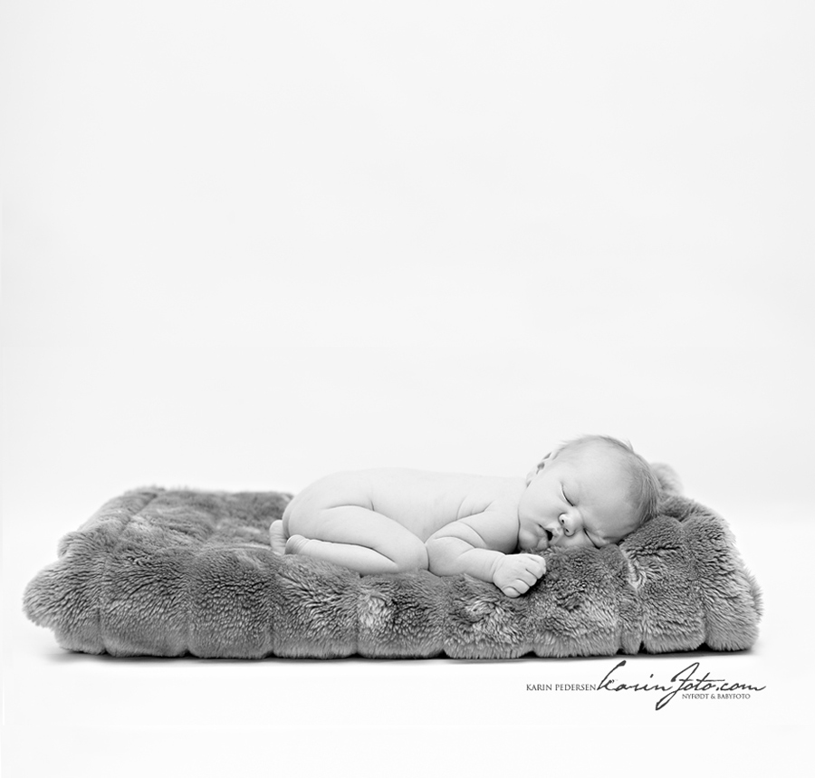 Nyfødtfoto babyfoto