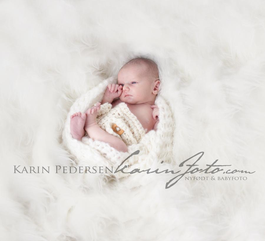 Nyfødtfotografering i østfold,sarpsborg,fredrikstad,sarpsborg,halden,moss, oslo,Karinfoto