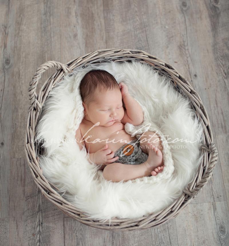 babyfotografering,fotografering,babystudio,karinfoto