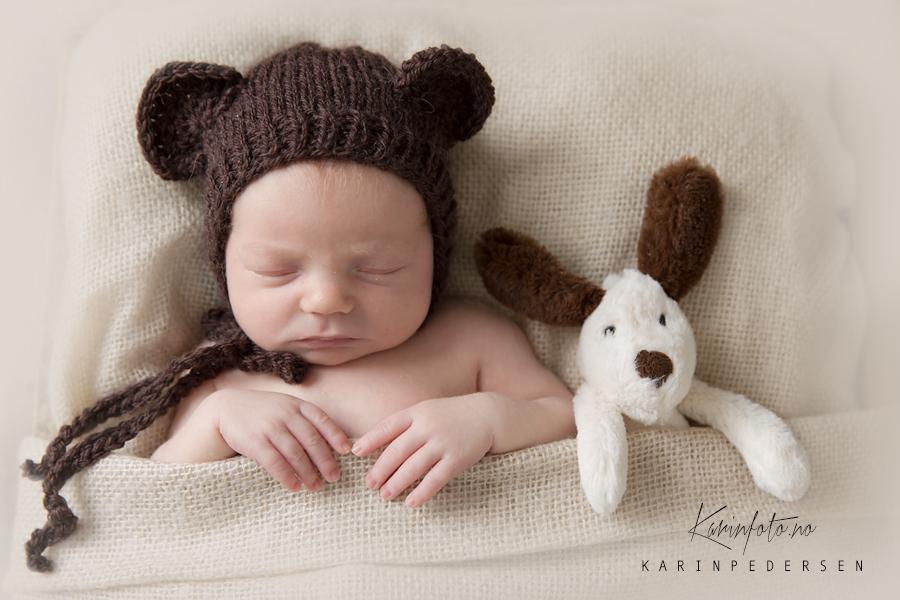vakker,nyfødt,baby,bamse,nyfødtlue,bjørnelue,karinfoto,fotograf,babyfotograf,kreativ,