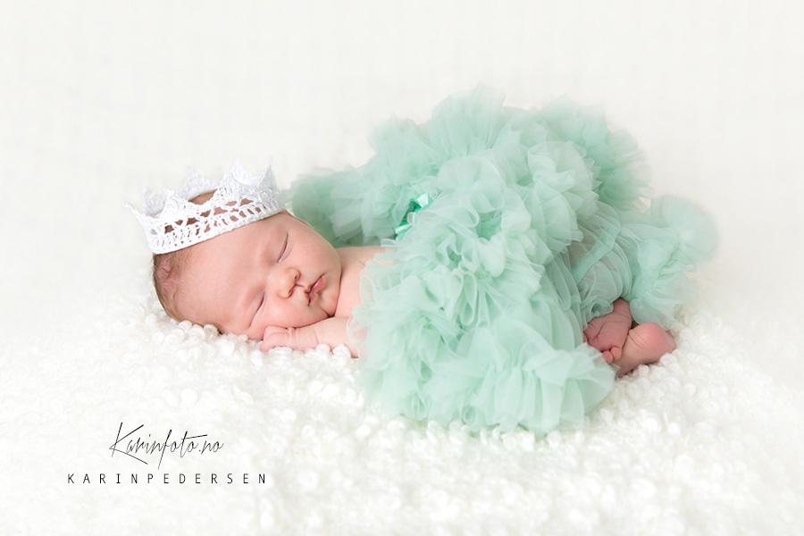 Nyfødtfotografering,tyllskjørt,prinsesse,karinfoto,sarpsborg,nyfødt,fotograf