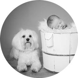 Nyfødtfoto med firbeint