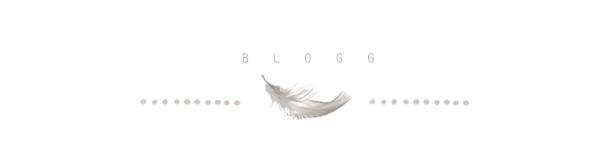 imgheadblog2