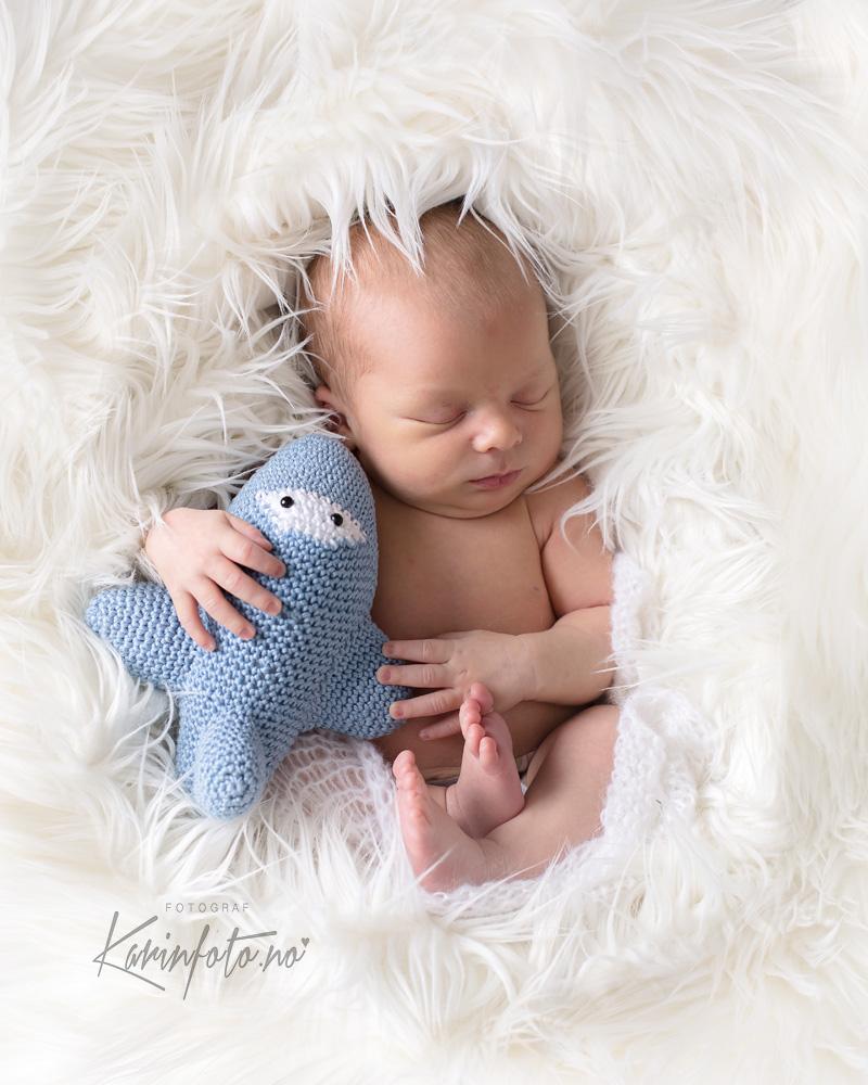 Nyfødtfotografering,KarinFoto,nyfødtfotograf,Fotograf,nyfødt,fotografering