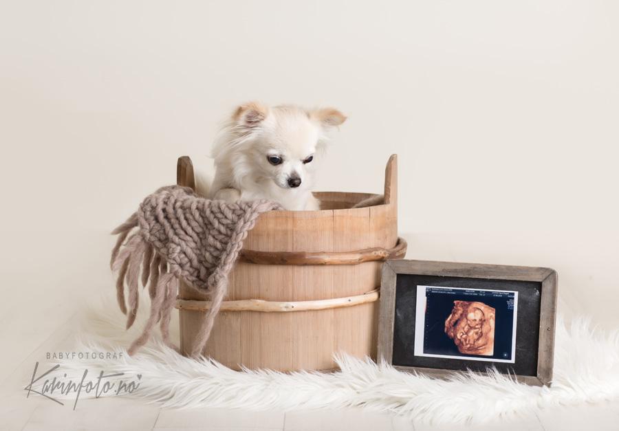 vakre livmortapp tidlig graviditet