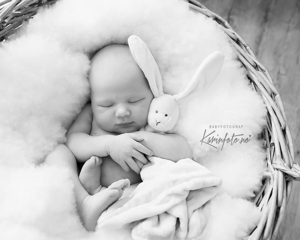 nyfødtfoto_karinfoto_babyfotograf_karinPedersen