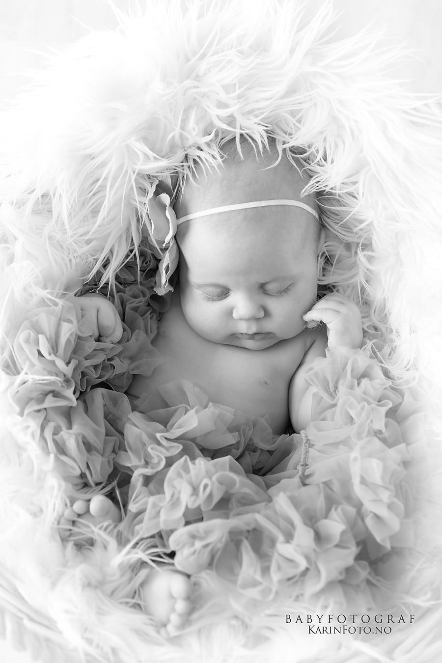Babyfotografering,baby8uker,babyfoto,karinfoto,karinPedersen,fotograf,babyfotograf