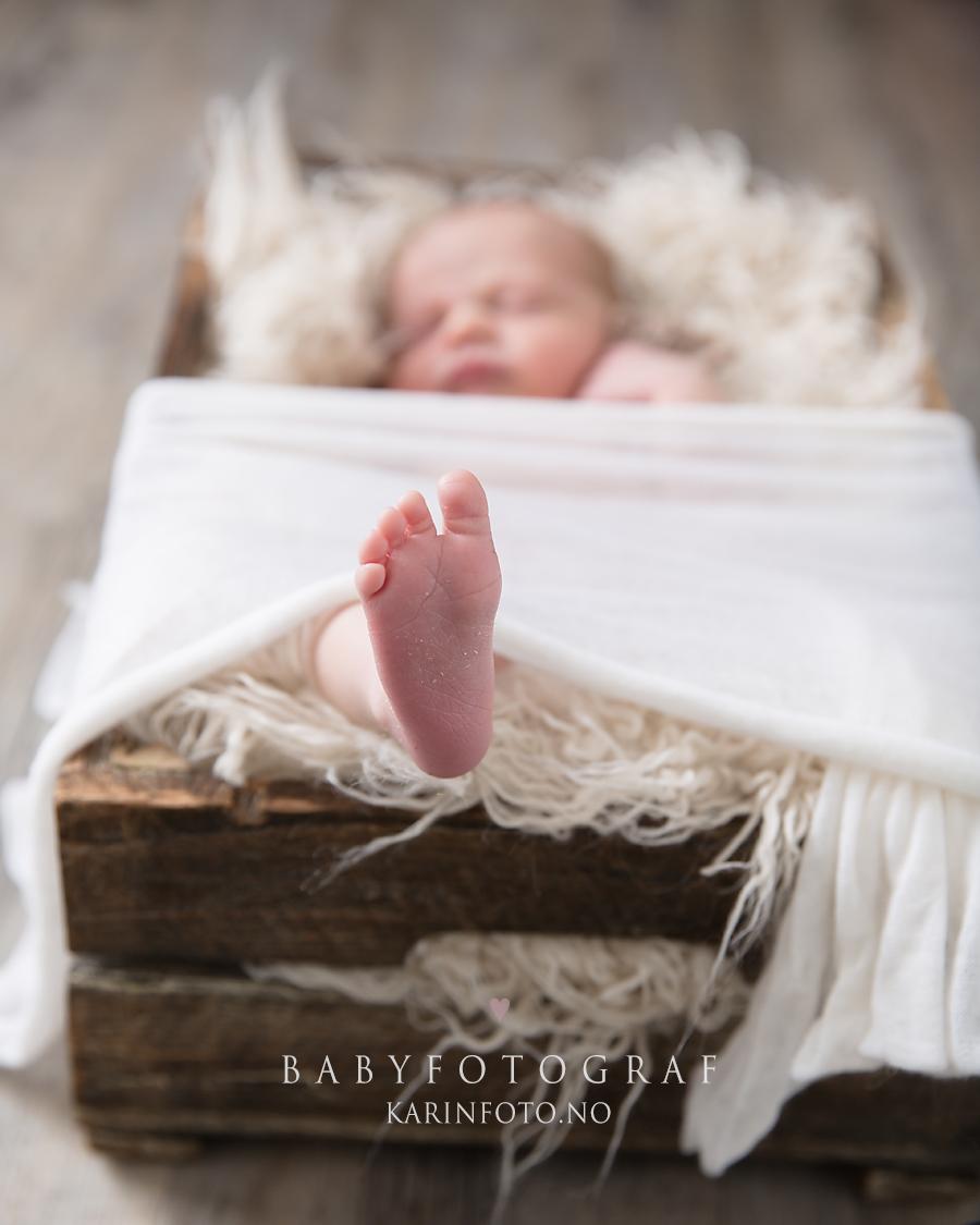 Nyfødtfotografering,nyfødtfotograf i sarpsborg,Fotograf Karin Pedersen,sovebilder,nyfødtbilder,nyfødtfoto,Oslo,østlandet