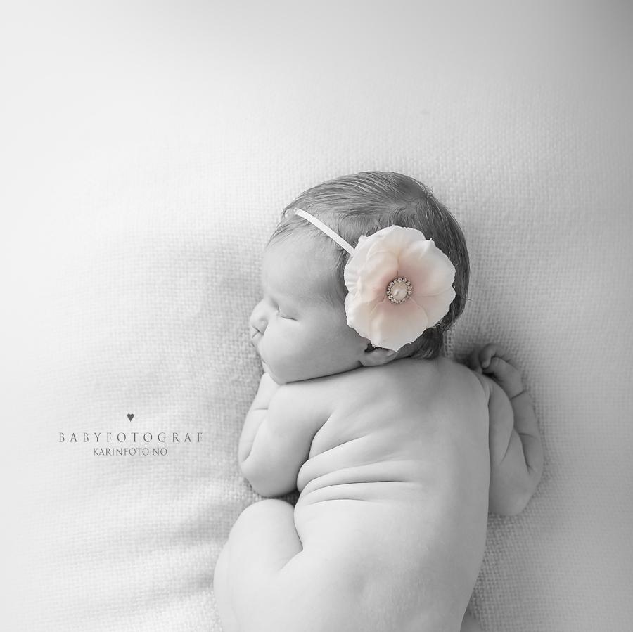 Erfaren nyfødtfotograf,Babyfotograf,fotograf,nyfødtfotografering,sorthvitt,digitale bilder,høyoppløselige filer,minnepenn,babyfotograf i Sarpsborg,fredrikstad,moss,halden,Ski,Oslo