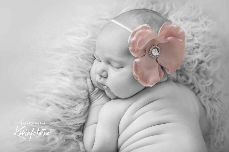 Nyfødtfotografering,karinfoto,babyfotograf,KarinPedersen,Sarpsborg,babyfotografering,Babyfoto,Horten,Østlandet