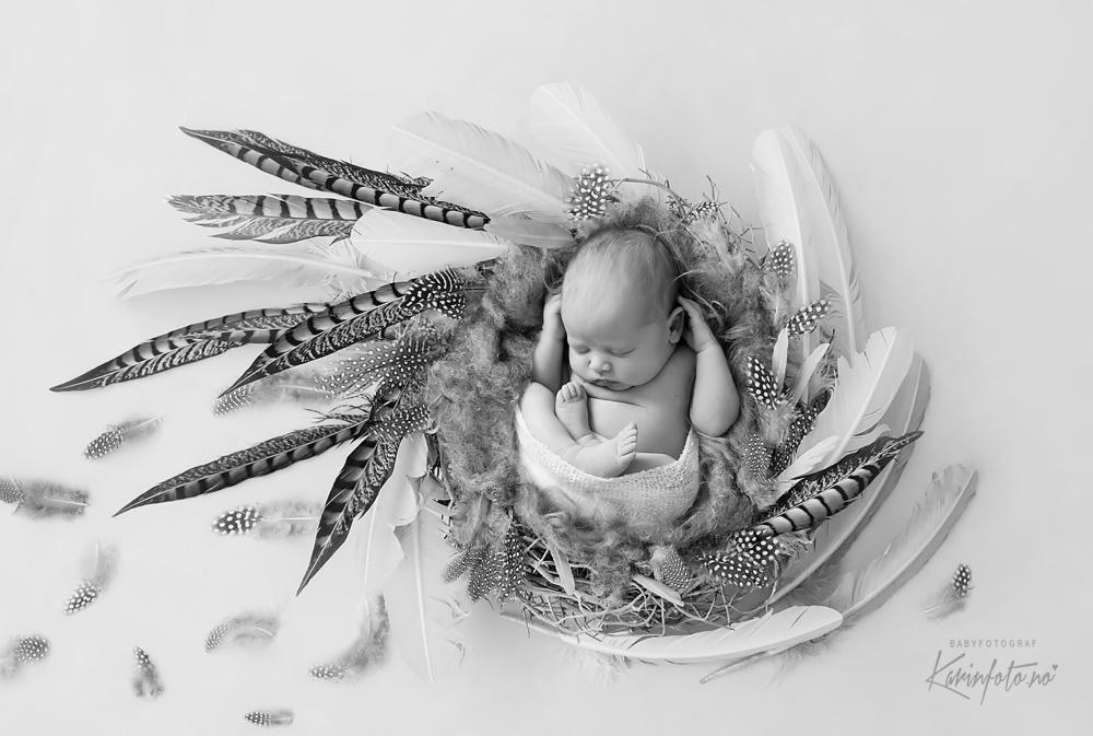 Fotograf,karinPedersen,Karinfoto,fineart,art,kunstbilde,nyfødtfotografering,profesjonell,fotograf