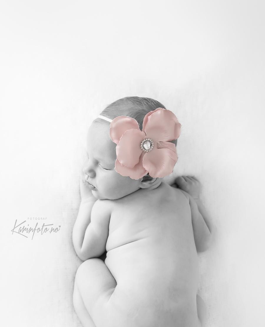KarinFoto,fotograf Karin Pedersen,sarpsborg,oslo,fredrikstad,moss,halden,vestfold,barsel,fødsel,babyfoto,babyfotograf,hårbånd,rosa