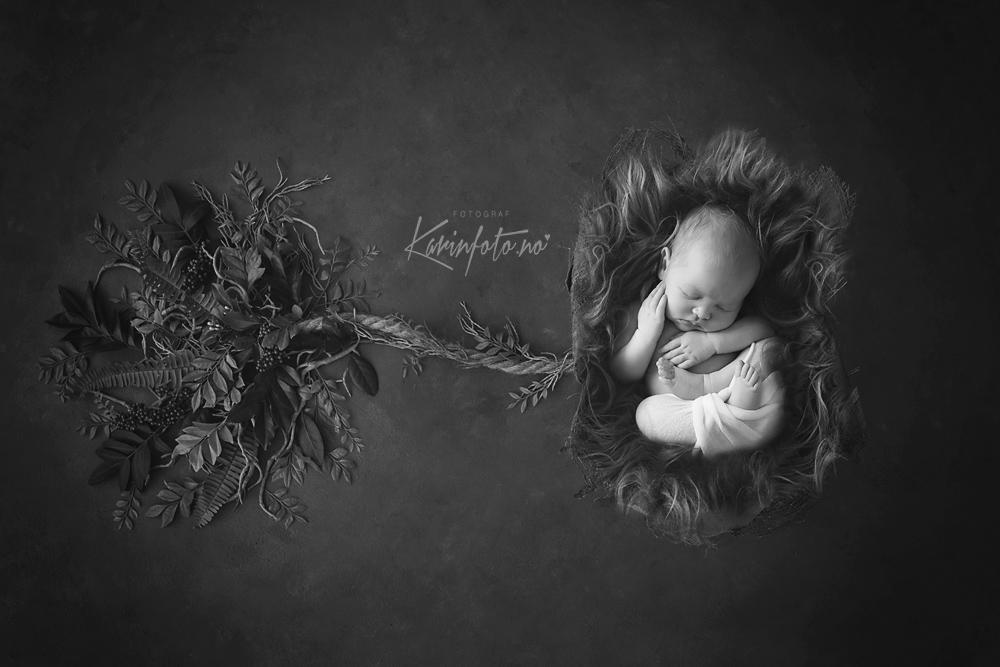 babyfotograf,nyfødtfotograf,nyfødt,baby,barsel,fødsel,profesjonell,fotograf,babyfoto,fineart,kunst,kunstbilde,sarpsborg,norway,newbornphotographer,newbornphoto,fredrikstad,moss,halden,oslo,vestfold,askim