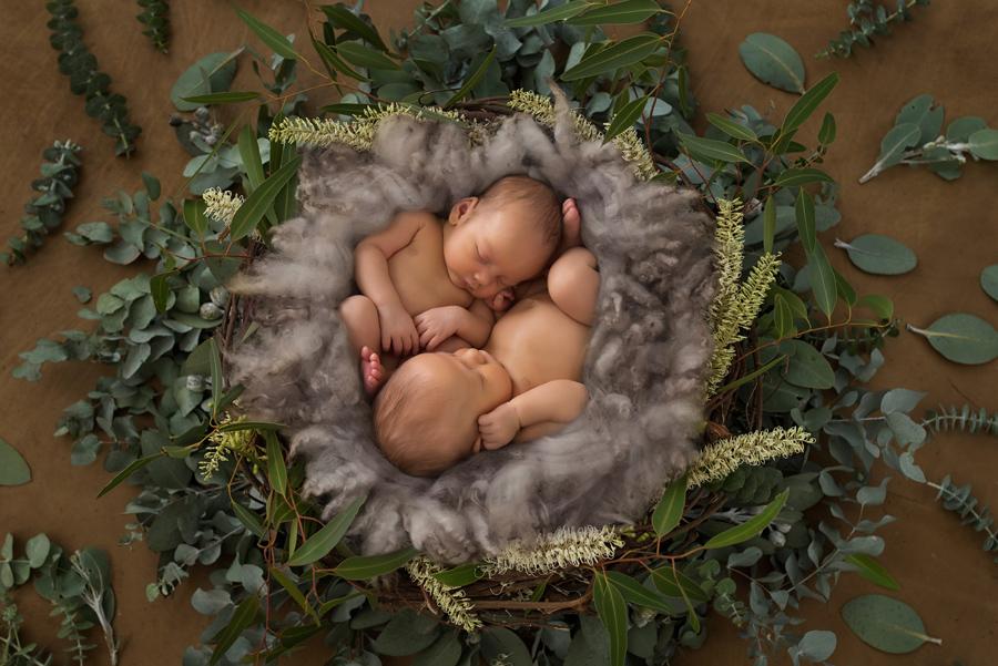Nyfødtfotografering,nyfødtfoto,babyfoto,tvillinger,brødre,barsel,Fotograf Karin Pedersen