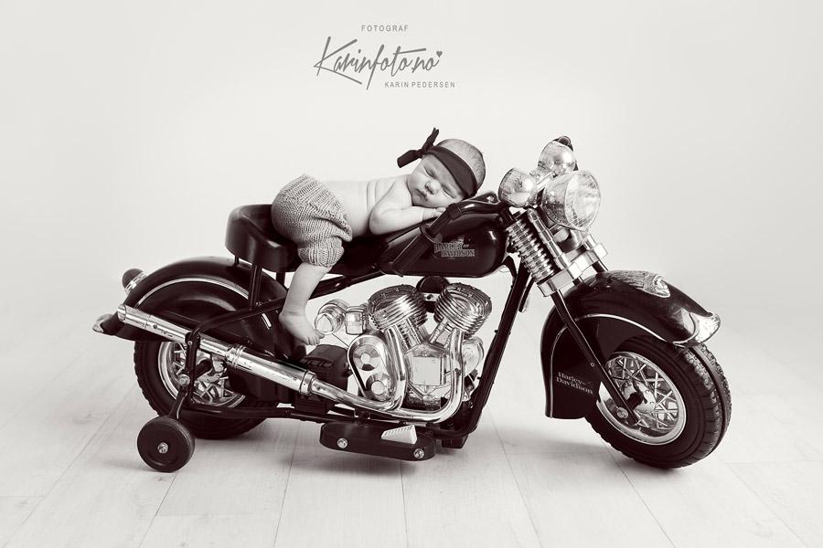 Nyfødtfotografering,studiorekvisitt,harleydavidson,tinybiker,fotograf,babyfotograf,østfold,sarpsborg,fredrikstad,moss,halden,oslo,vestby,son