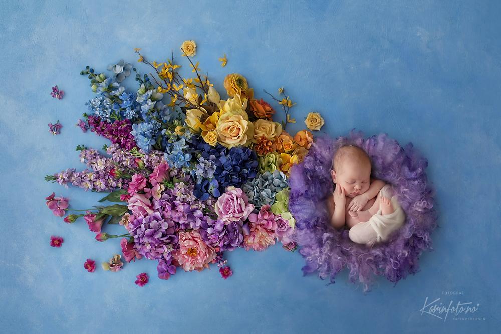 fotograf,karinpedersen,nyfødtfotograf,babyfotograf,sarpsborg,viken,østfold,fredrikstad,moss,halden,vestby,oslo,fineart,baby,babyfoto,sovebilder